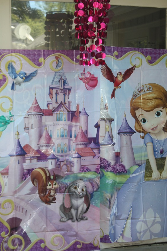 Sofia The First Birthday Party