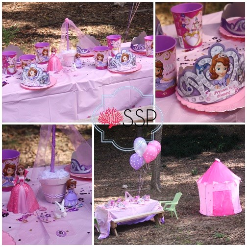 & Sofia The First Birthday Party
