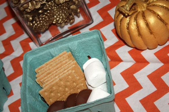 Fabulous Family Fun S'mores