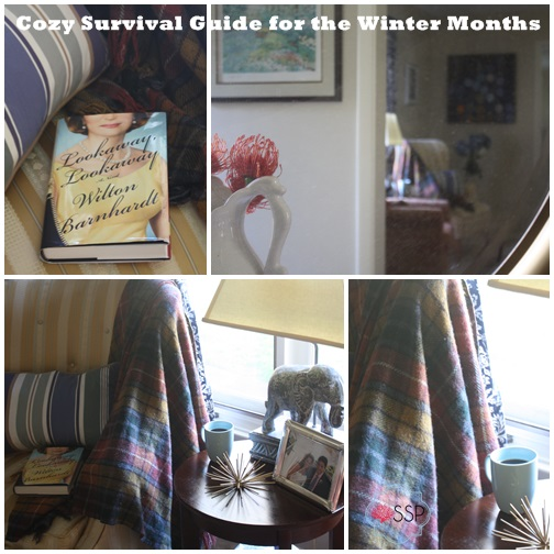 Cozy Survival Guide for the Winter Months